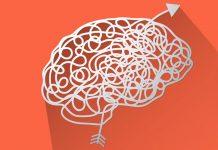 best brain supplements and nootropics