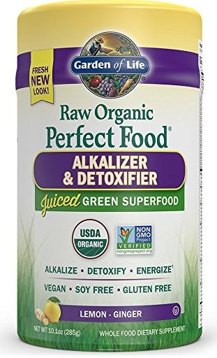 Garden of Life Raw Organic Perfect Food Review