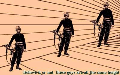Larger man? Line Illusions