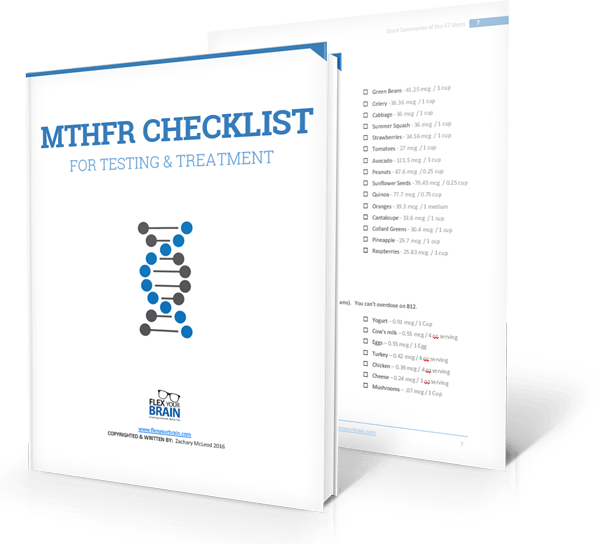 MTHFR-check-list-book-and-grocery-list-together