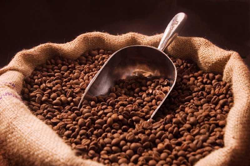 coffee beans - caffeine - best nootropics